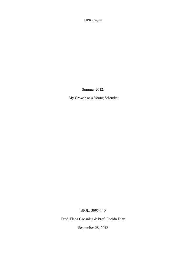 Rise reflexion essay