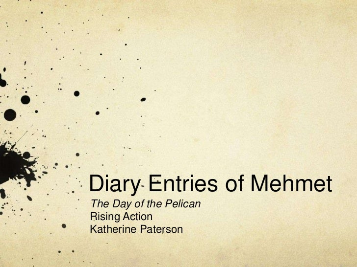 Diary Entries of MehmetThe Day of the PelicanRising ActionKatherine Paterson