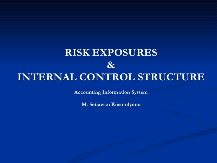 RISK EXPOSURES & INTERNAL CONTROL STRUCTURE Accounting Information System M. Setiawan Kusmulyono