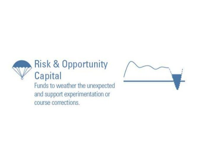 Risk and Opportunity Capital