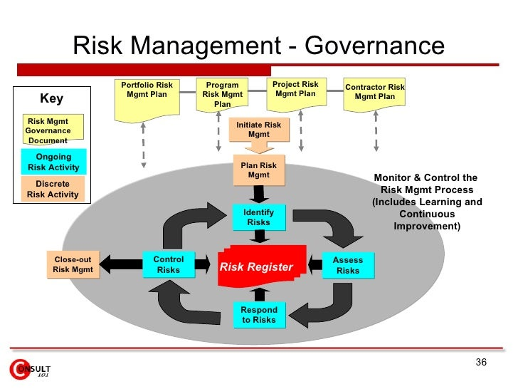 essays on corporate risk governance