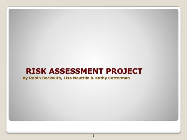 RISK ASSESSMENT PROJECT By Robin Beckwith, Lisa Neuttila & Kathy Cotterman 1