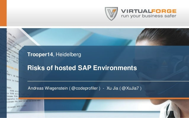 Risks of Hosted SAP Environments
