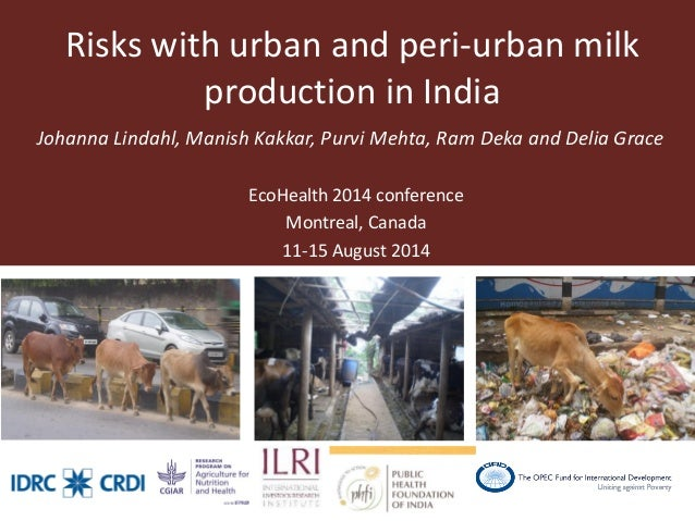 Risks with urban and peri-urban milk production in India  Johanna Lindahl, Manish Kakkar, Purvi Mehta, Ram Deka and Delia ...