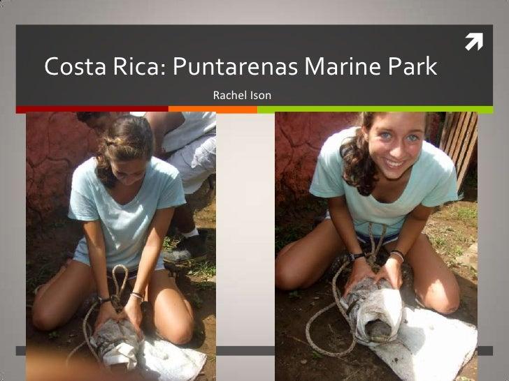 Costa Rica: Puntarenas Marine Park