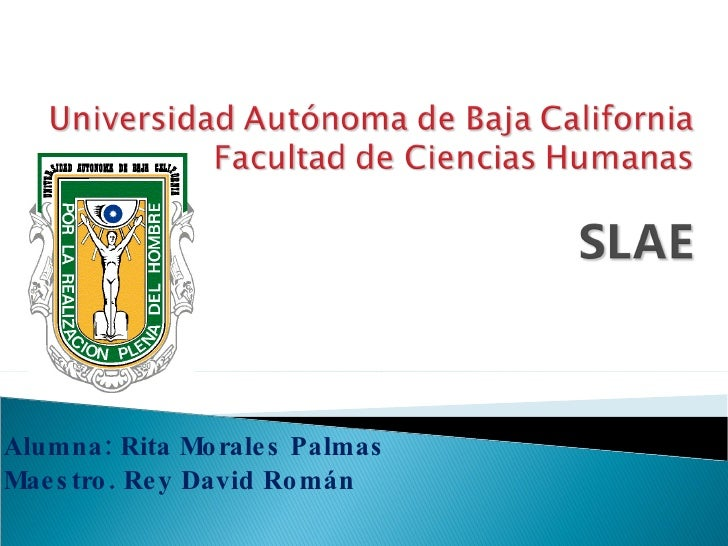 Alumna: Rita Morales Palmas Maestro. Rey David Román