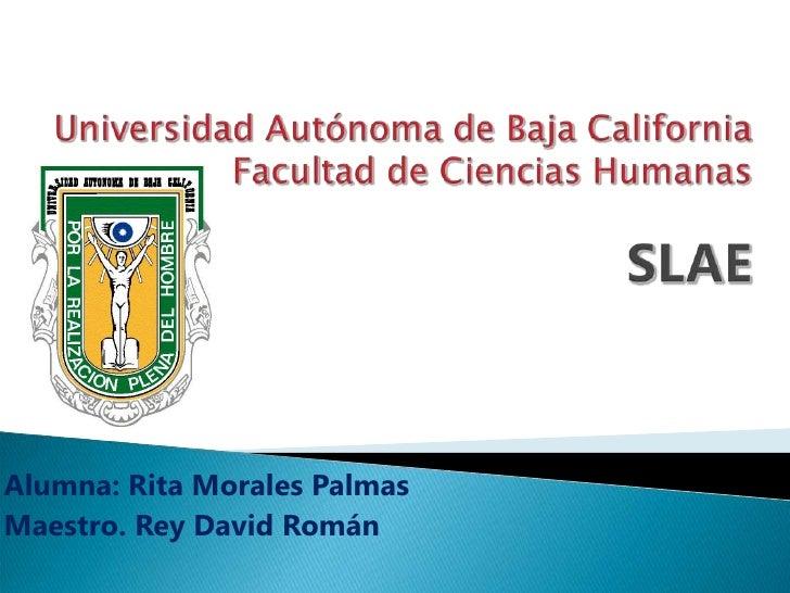 Rita Morales Slae