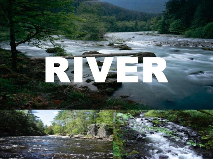 River  eco report