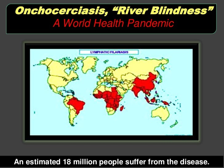 river blindness essays Check out our top free essays on river blindness to help you write your own essay.