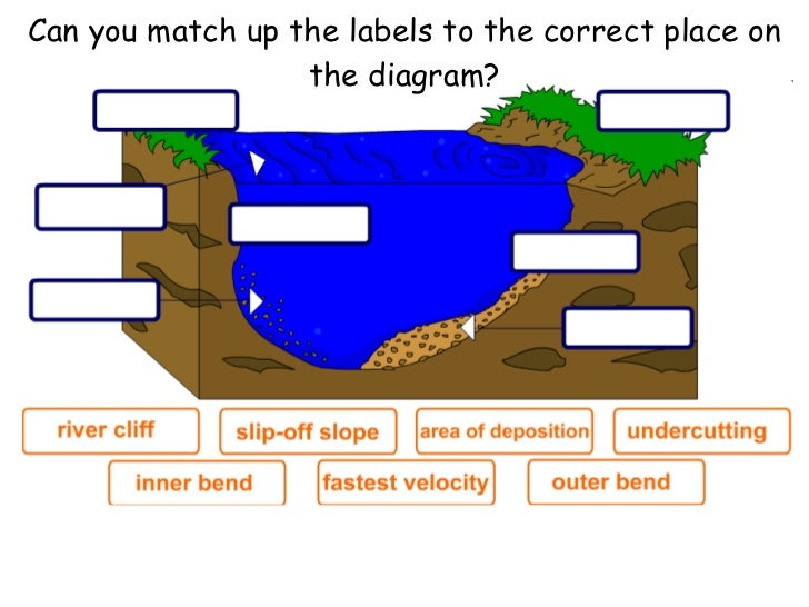 35 Place The Correct Labels On The Appropriate Area Of The