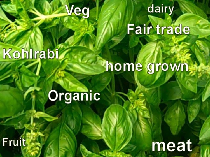 Riverford Organic Farm        Devon, U.K.