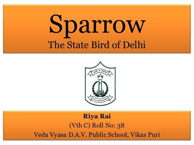 Sparrow The State Bird of Delhi Riya Rai (Vth C) Roll No: 38 Veda Vyasa D.A.V. Public School, Vikas Puri