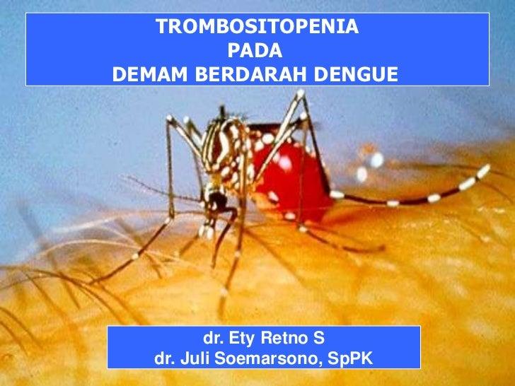 1<br />TINJAUAN PUSTAKA HEMATOLOGI<br />TROMBOSITOPENIA<br />PADA <br />DEMAM BERDARAH DENGUE<br />dr. Ety Retno S<br />dr...