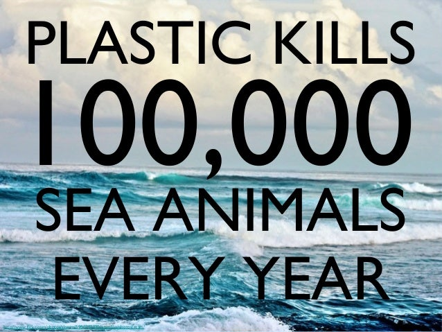 PLASTIC KILLS  100,000 SEA ANIMALS EVERY YEAR  http://www.flickr.com/photos/skyrim/5980752930/sizes/l/in/photostream/