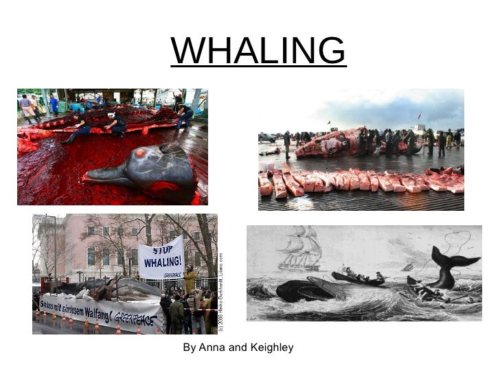 WHALING By Anna and Keighley