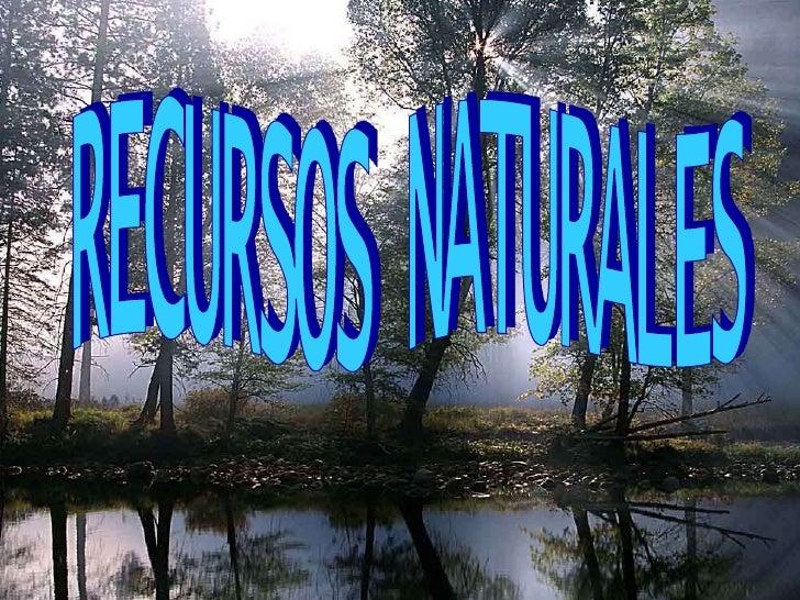 Recursos Naturales I