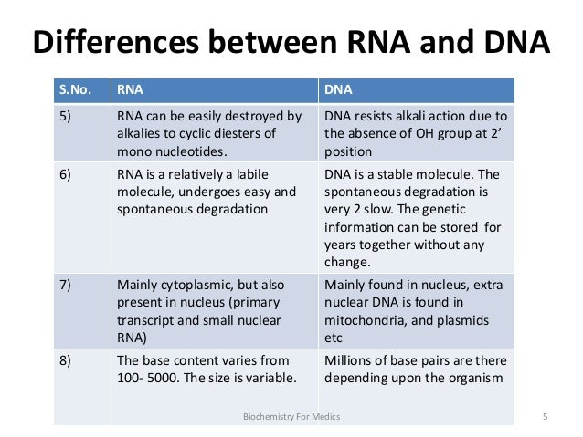 Dna And Rna Compare And Contrast Chart rna - structure, types and ...