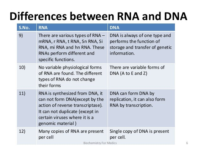 Describe the structure of dna essay
