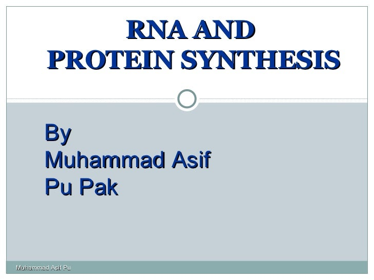 RNA AND  PROTEIN SYNTHESIS By  Muhammad Asif Pu Pak Muhammad Asif Pu