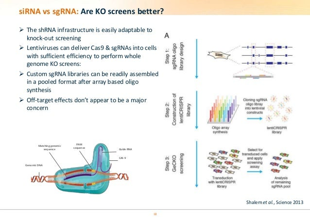 rnai screening and gene knockdown Rnai-mediated gene silencing  rnai-mediated knockdown is preferable to genome editing when genome-scale crispr-cas9 knockout screening in human cells.