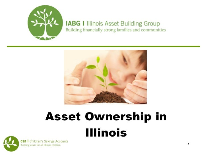 Asset Ownership in Illinois