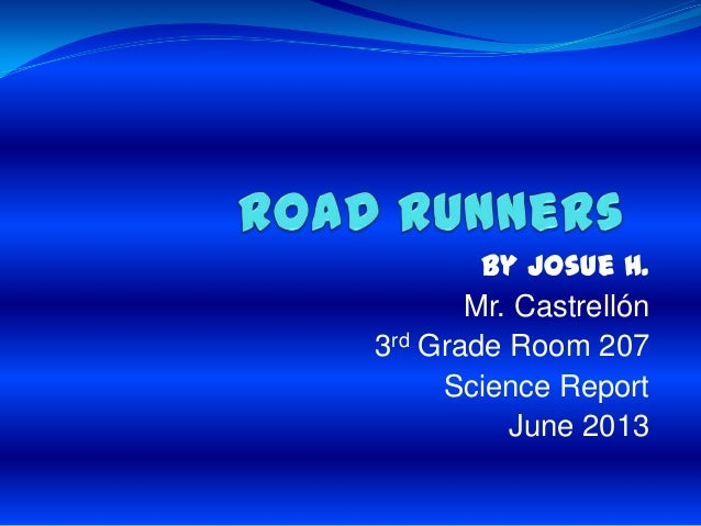 Road runners by josue