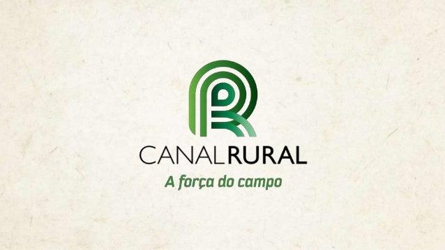 Ribeirão Preto, SP
