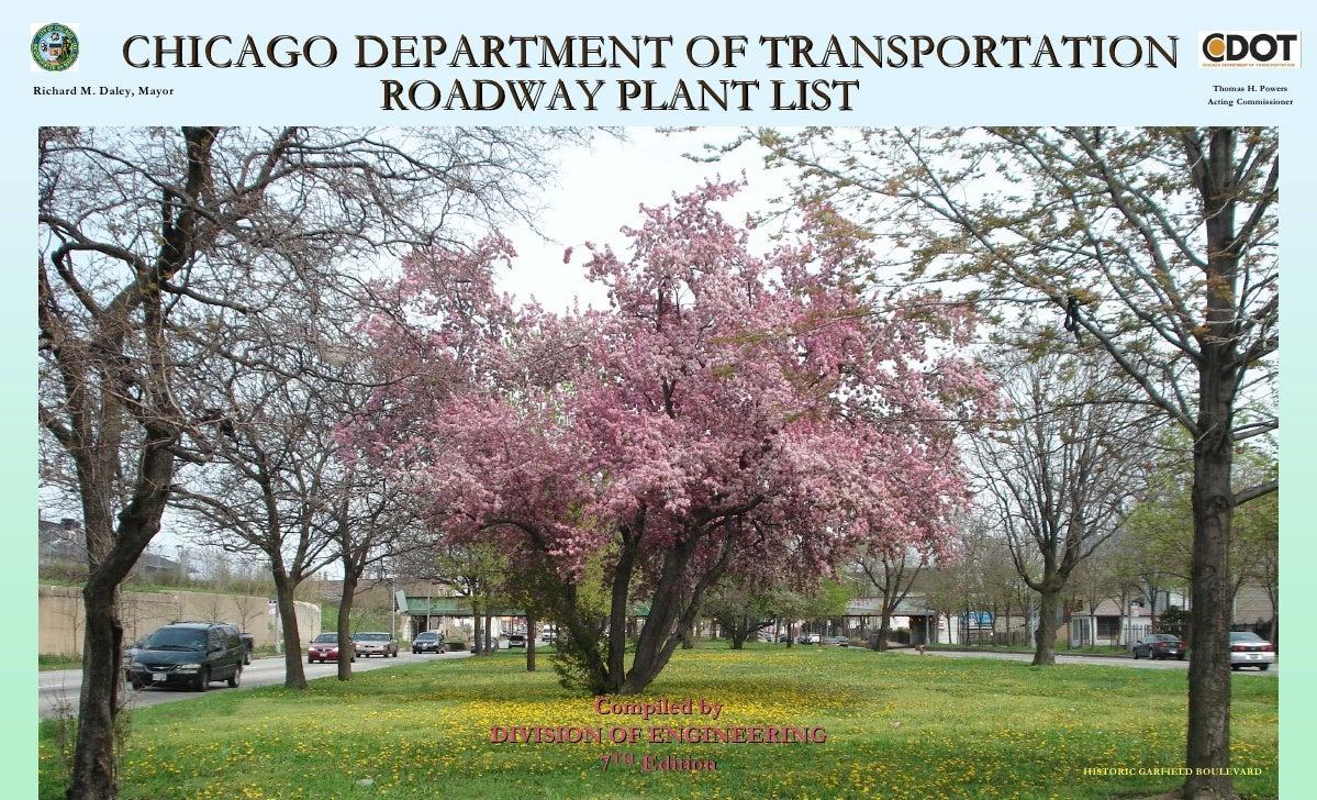 CHICAGO DEPARTMENT OF TRANSPORTATION Richard M. Daley, Mayor                           ROADWAY PLANT LIST                 ...
