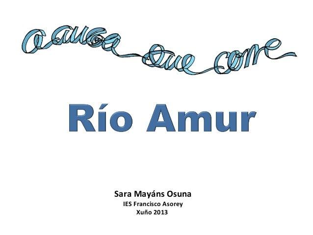 Sara Mayáns Osuna IES Francisco Asorey Xuño 2013