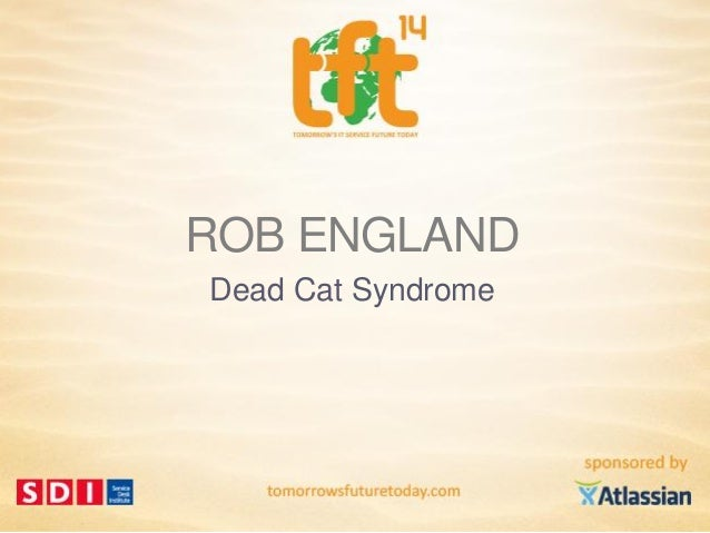 Rob England, Dead Cat Syndrome by The IT Skeptic