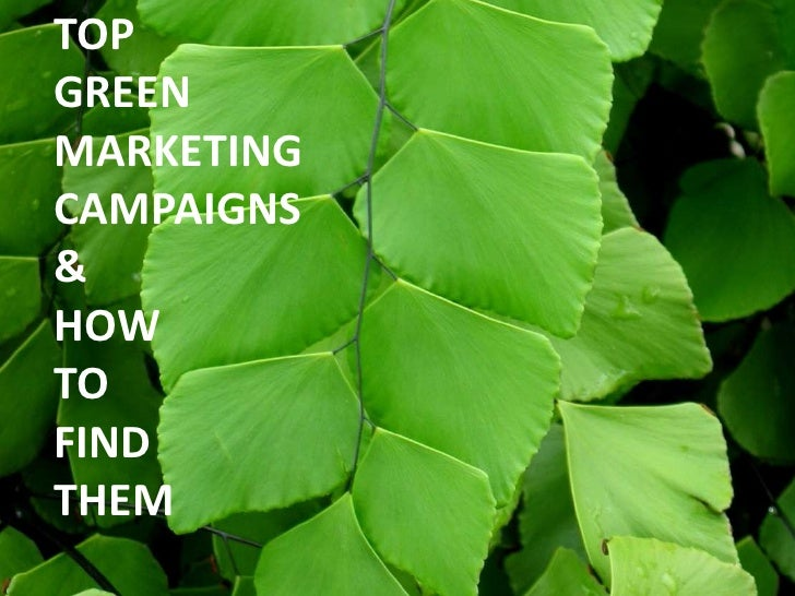 examples of green marketing Green marketing in india: an overview  green marketing, an empirical study of united states and australian marketing managers, a description of what.