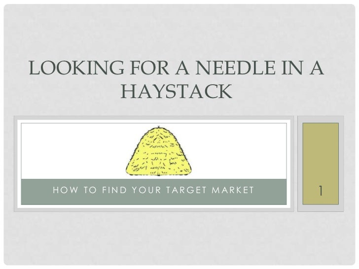 LOOKING FOR A NEEDLE IN A       HAYSTACK  HOW TO FIND YOUR TARGET MARKET   1