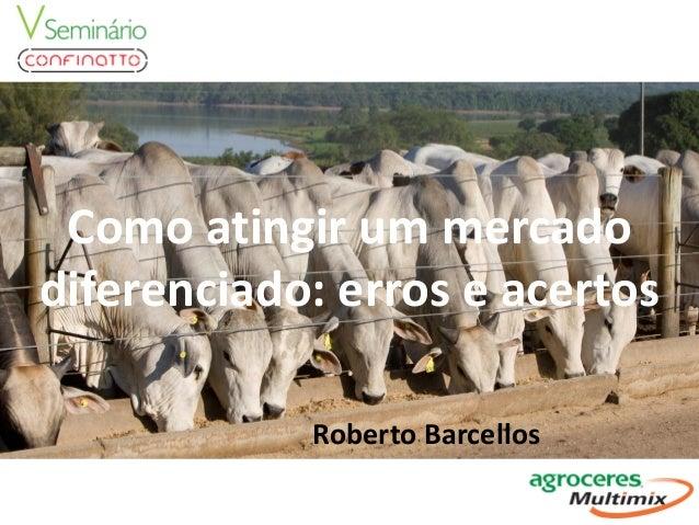 Como atingir um mercado diferenciado: erros e acertos Roberto Barcellos