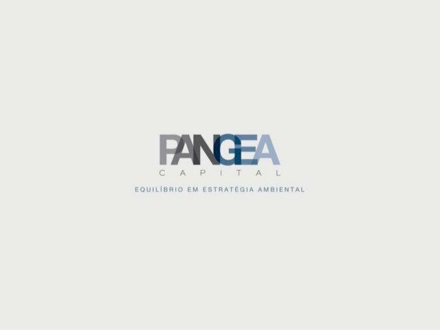 PANGEA Capital - Equilíbrio em Estrategia Ambiental - Roberto Strumpf