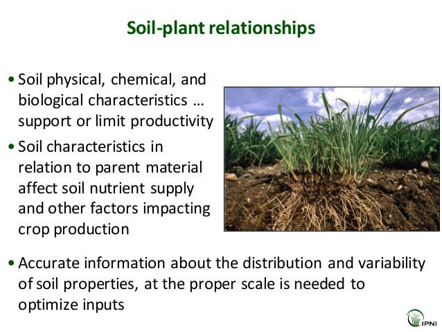 The value of global soil information to the international for What are soil characteristics