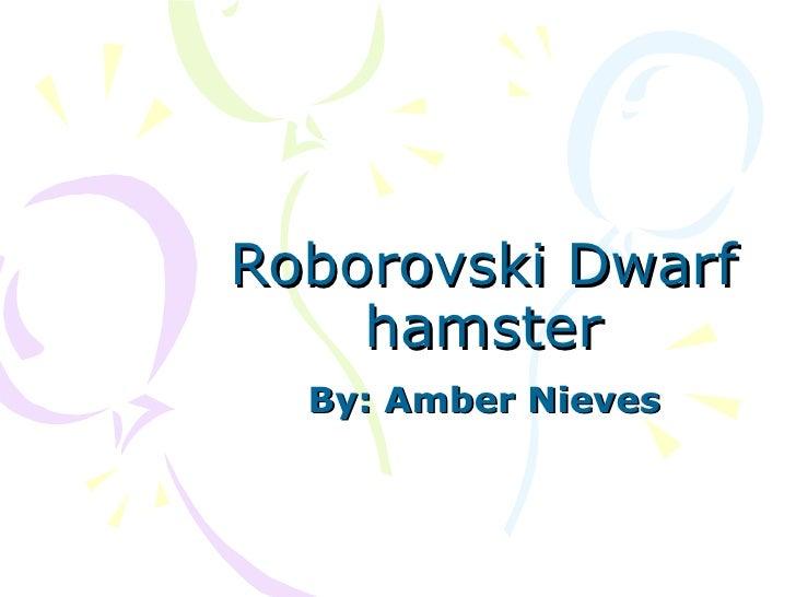 Roborovski Dwarf hamster By: Amber Nieves