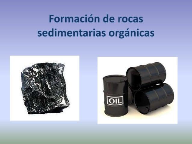 Rocas orgánicas