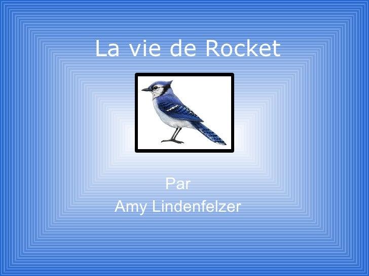 La vie de Rocket            Par  Amy Lindenfelzer