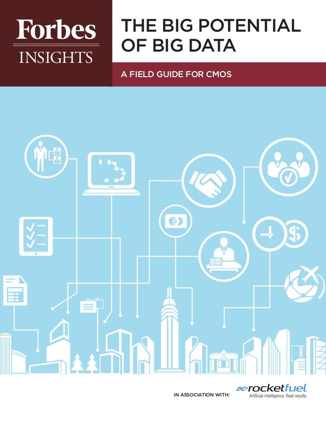 THE BIG POTENTIAL OF BIG DATA A FIELD GUIDE FOR CMOs  in association with: