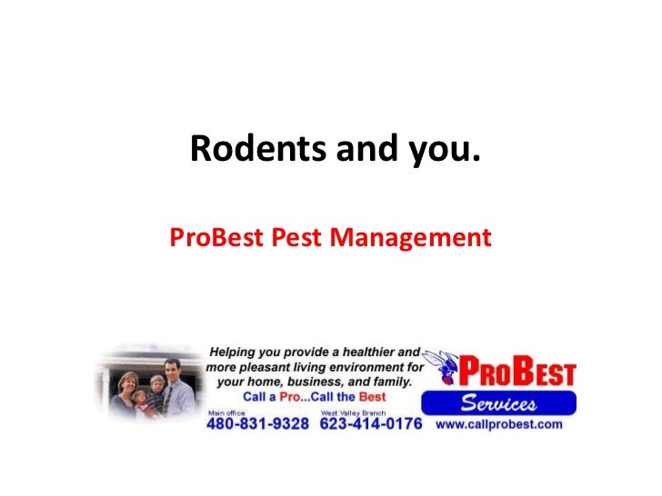 Rodents and you.<br />ProBest Pest Management<br />