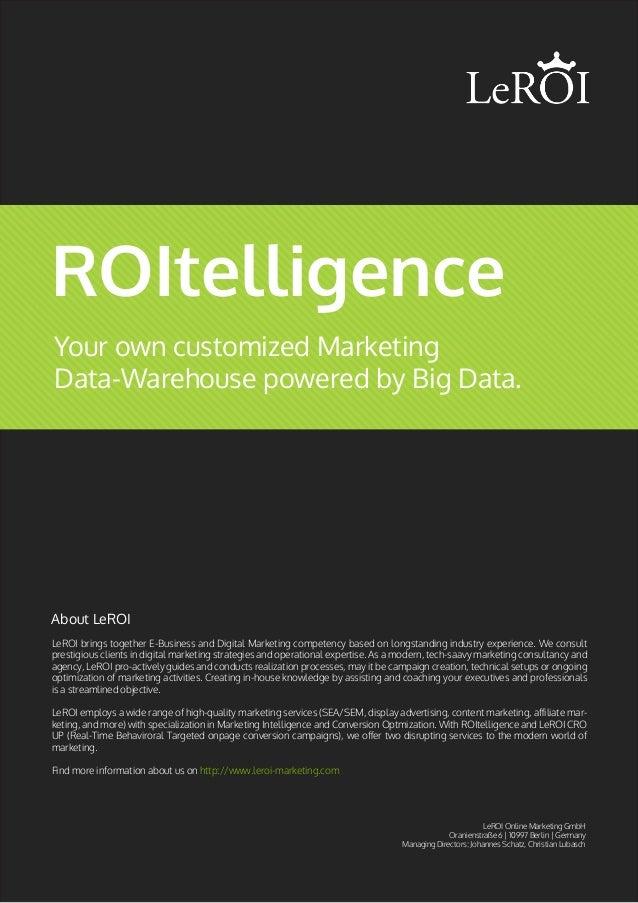 ROItelligence Marketing Data Warehouse by LeROI