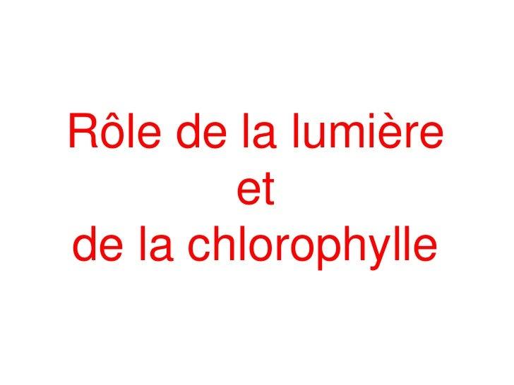 Rôle de la lumière        etde la chlorophylle