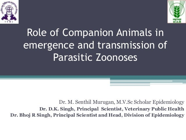 Role of Companion Animals in emergence and transmission of Parasitic Zoonoses  Dr. M. Senthil Murugan, M.V.Sc Scholar Epid...