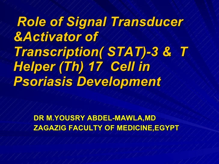 Role  of stat3   protein & thelper 17  cell in psoriasis  development by yousry