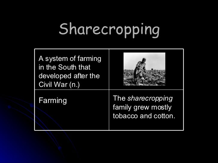 essay sharecropping