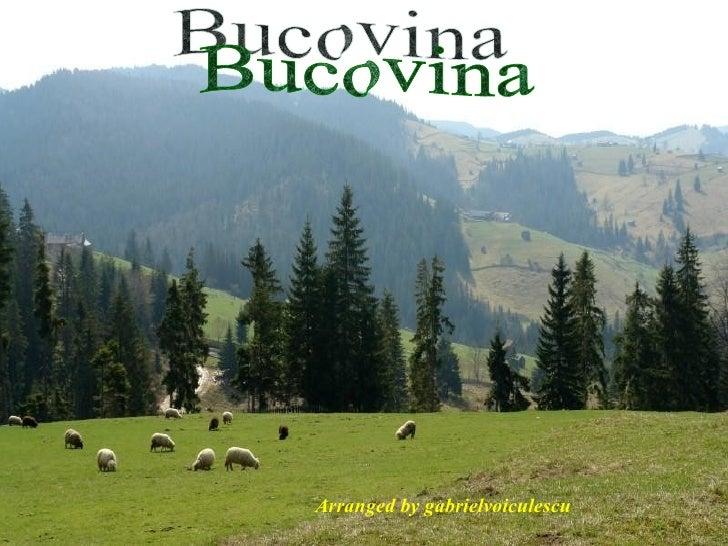 Bucovina Arranged by gabrielvoiculescu
