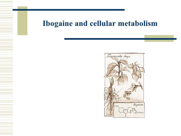 Ibogaine and cellular metabolism