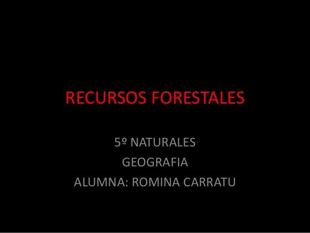 RECURSOS FORESTALES 5º NATURALES GEOGRAFIA ALUMNA: ROMINA CARRATU