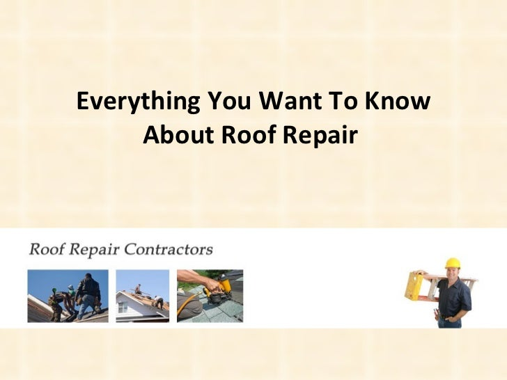 Everything You Want To Know About Roof Repair