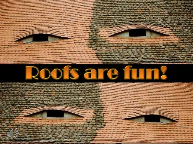 Roofs are fun! (v.m.)